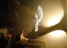Ангельские будни